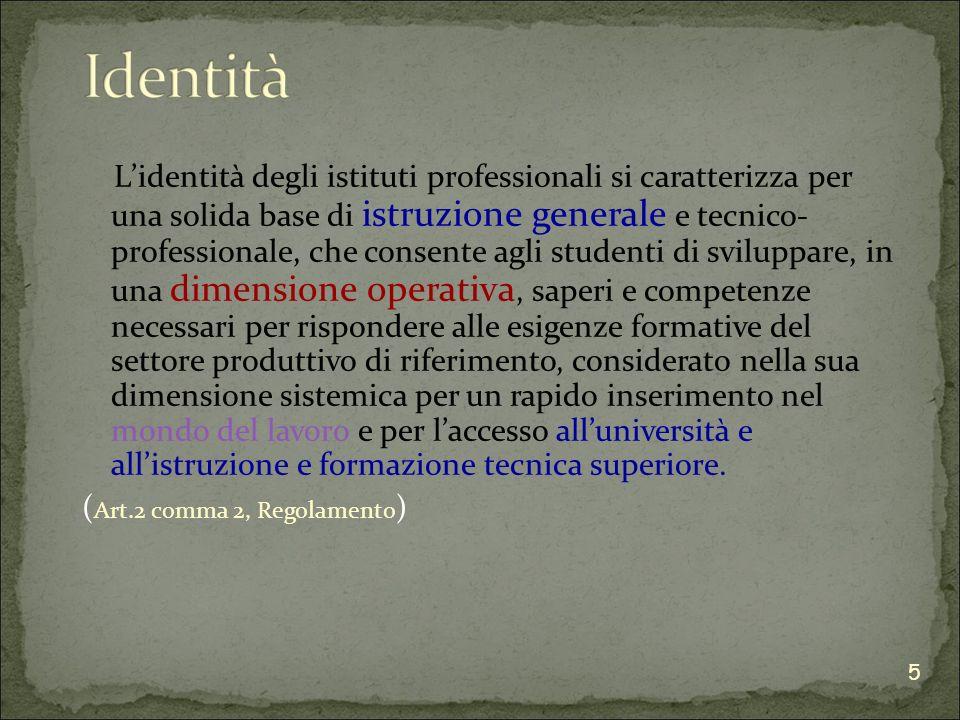 Gli istituti professionali definiscono, nella loro autonomia e nel rispetto delle tutele contrattuali in materia di organizzazione del lavoro, le modalità di costituzione dei dipartimenti e le regole per il loro funzionamento.