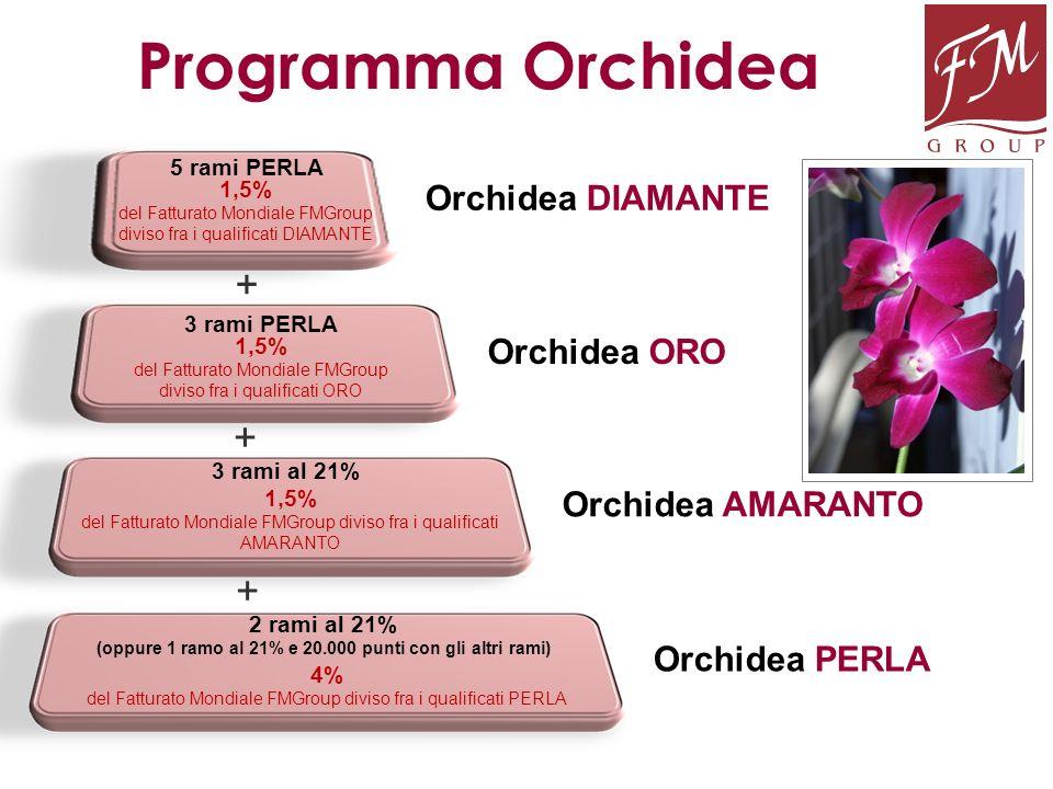 Orchidea DIAMANTE Orchidea PERLA Orchidea ORO Orchidea AMARANTO Programma Orchidea 2 rami al 21% (oppure 1 ramo al 21% e 20.000 punti con gli altri ra