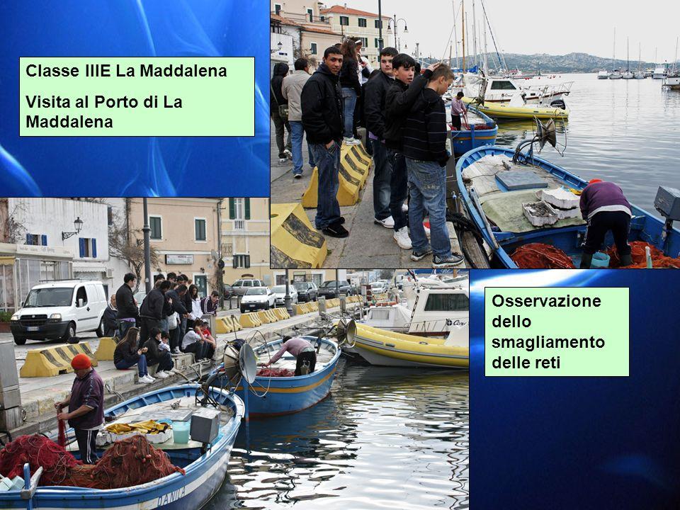 Classe IIIE La Maddalena Visita al Porto di La Maddalena Osservazione dello smagliamento delle reti