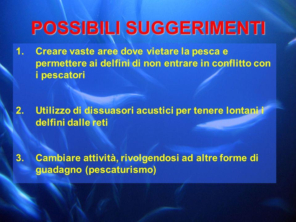 POSSIBILI SUGGERIMENTI 1.Creare vaste aree dove vietare la pesca e permettere ai delfini di non entrare in conflitto con i pescatori 2.Utilizzo di dis