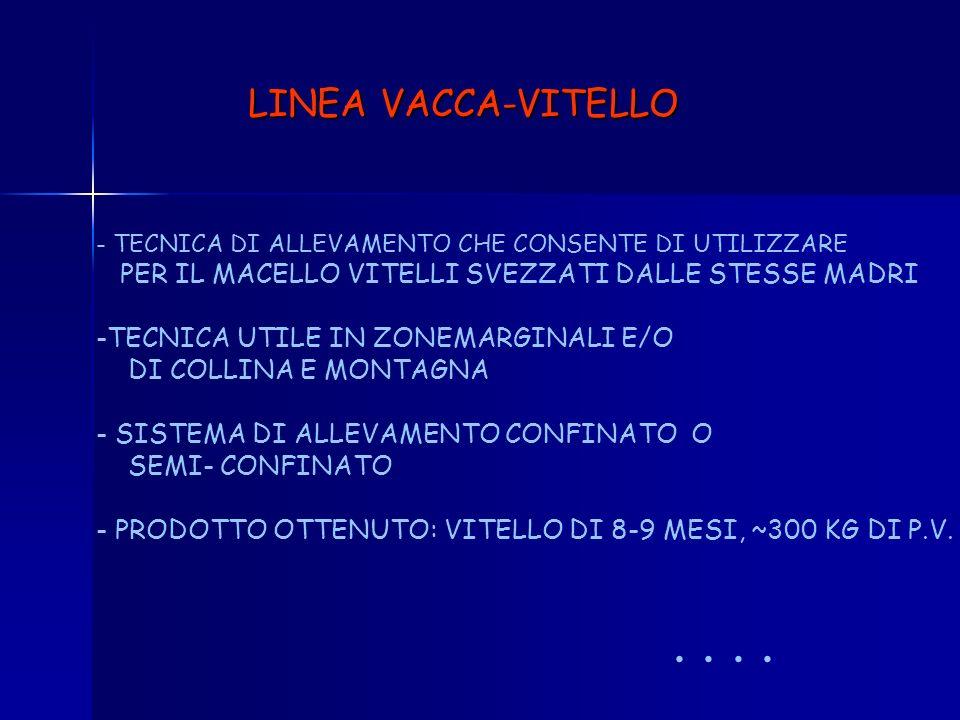 RIEPILOGO CATEGORIE OTTENIBILI IN ALLEVAMENTI DA LATTE - VITELLI A CARNE BIANCAP.V. 250-300 KG - BABY-BEEFP.V. 350-400 KG - VITELLONIP.V. 500 KG