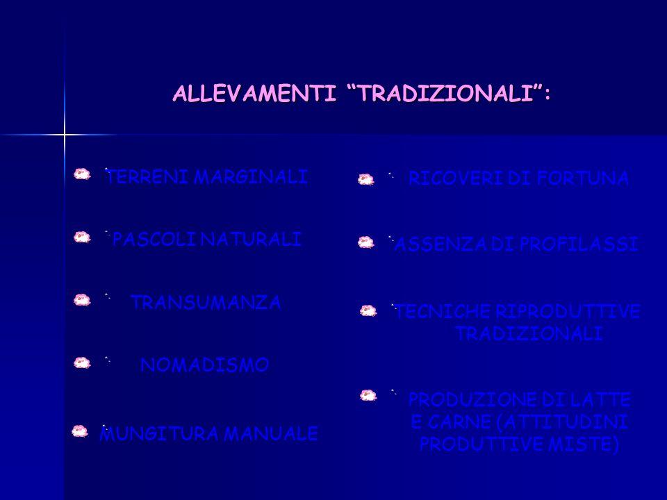 ALLEVAMENTO OVINI IN ITALIA STANZIALE O FISSO (75 %)TRANSUMANTE (25 %) 7 MILIONI DI CAPI PRESENTI