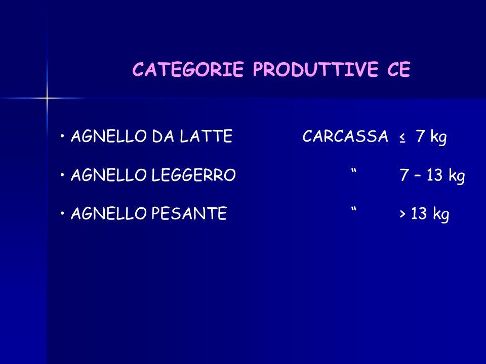 CARNE OVINA IN ITALIA MODESTA PRODUZIONE DISCRETO CONSUMO IMPORTAZIONE (DA FRANCIA, EST EUROPEO, NUOVA ZELANDA)
