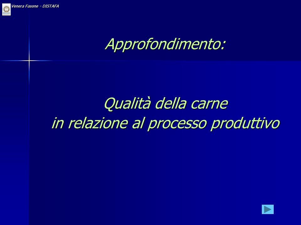 FONDAMENTALE IL CONTROLLO DI QUALITA OGGI: NON SOLO A VALLE, MA PER TUTTE LE COMPONENTI PRODUTTIVE (TOTAL QUALITY CONTROL)