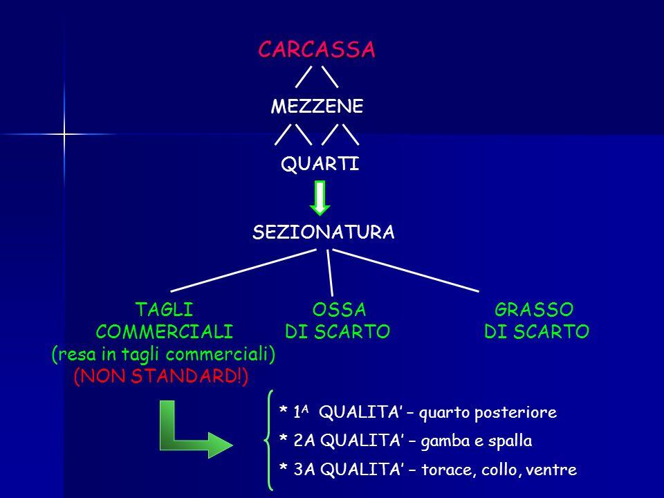 CATEGORIA DELLANIMALE SESSO E/O CASTRAZIONE TIPO GENETICO REGIME ALIMENTARE SISTEMA DI STABULAZIONE TARE DI MACELLAZIONE: 5° QUARTO CAUSE DI VARIAZION