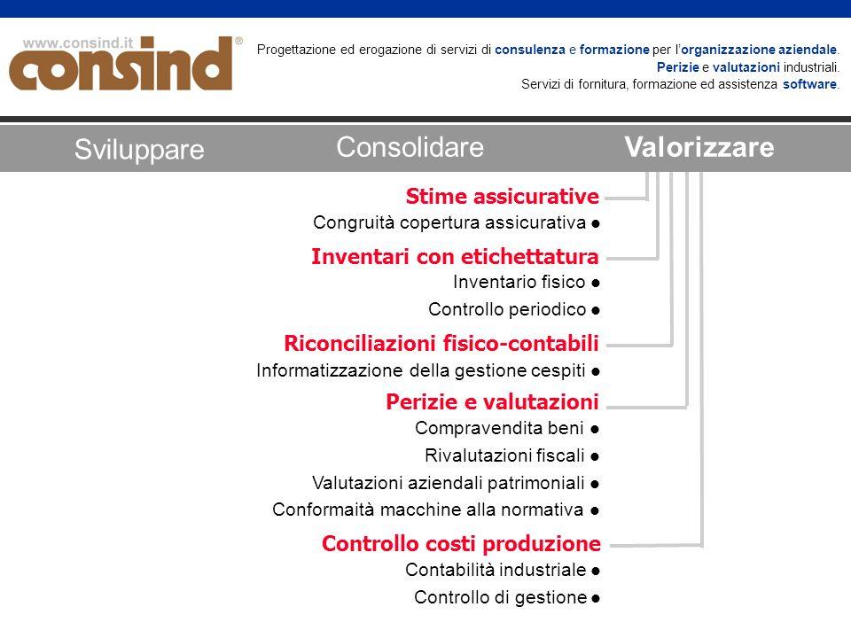 Progettazione ed erogazione di servizi di consulenza e formazione per lorganizzazione aziendale. Perizie e valutazioni industriali. Servizi di fornitu