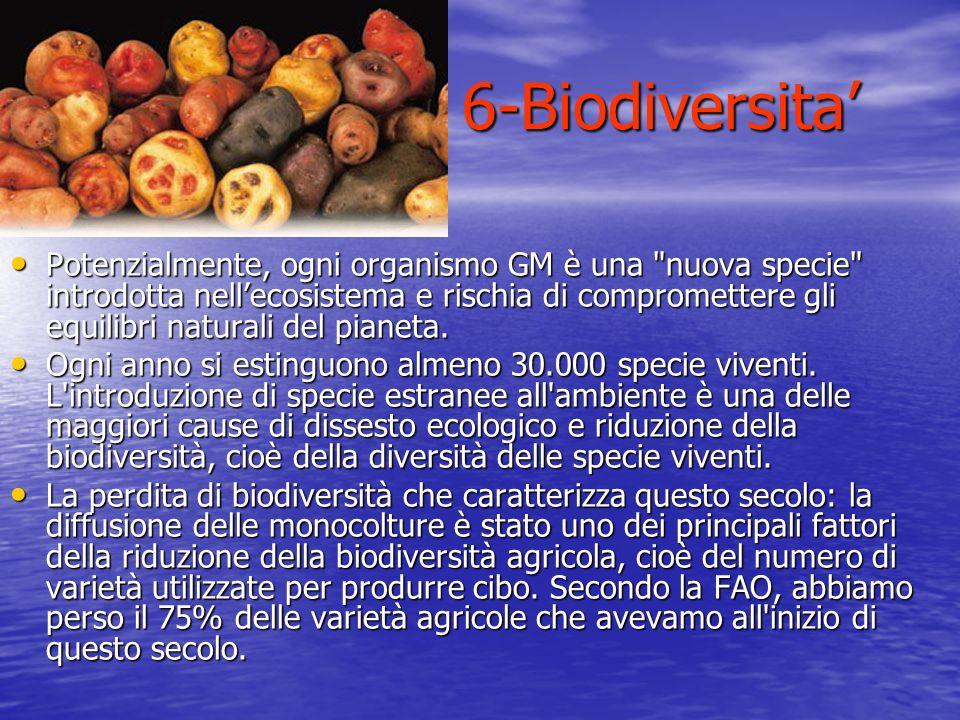Potenzialmente, ogni organismo GM è una
