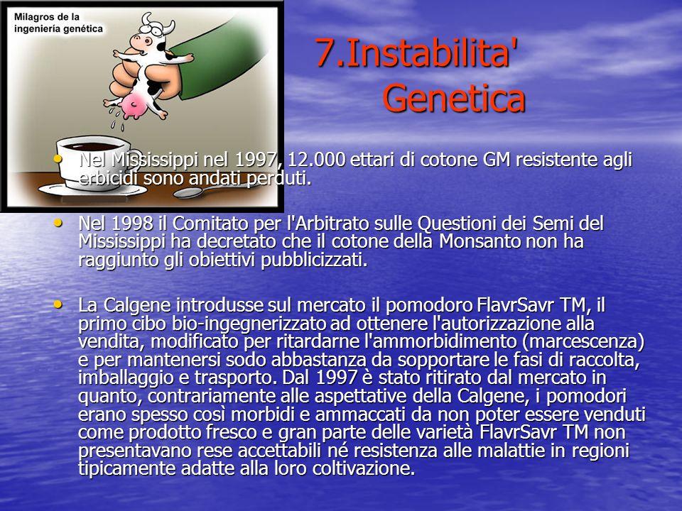 7.Instabilita' Genetica Nel Mississippi nel 1997, 12.000 ettari di cotone GM resistente agli erbicidi sono andati perduti. Nel Mississippi nel 1997, 1