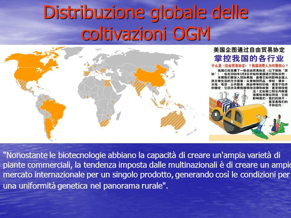 Distribuzione globale delle coltivazioni OGM
