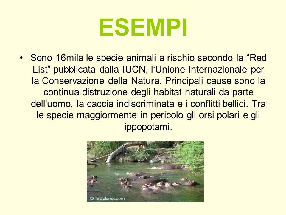 ESEMPI Sono 16mila le specie animali a rischio secondo la Red List pubblicata dalla IUCN, lUnione Internazionale per la Conservazione della Natura. Pr