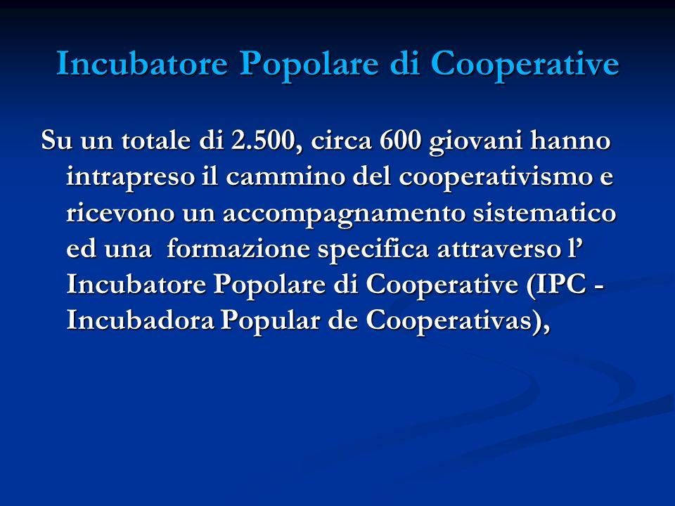 Incubatore Popolare di Cooperative Su un totale di 2.500, circa 600 giovani hanno intrapreso il cammino del cooperativismo e ricevono un accompagnamento sistematico ed una formazione specifica attraverso l Incubatore Popolare di Cooperative (IPC - Incubadora Popular de Cooperativas),