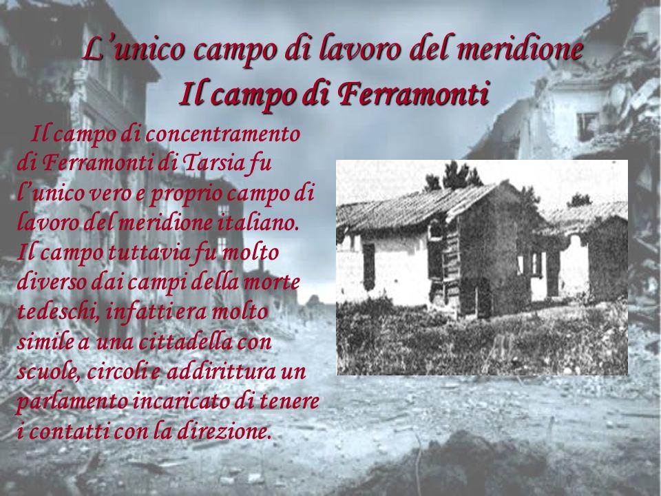 Lunico campo di lavoro del meridione Il campo di Ferramonti Il campo di concentramento di Ferramonti di Tarsia fu lunico vero e proprio campo di lavor