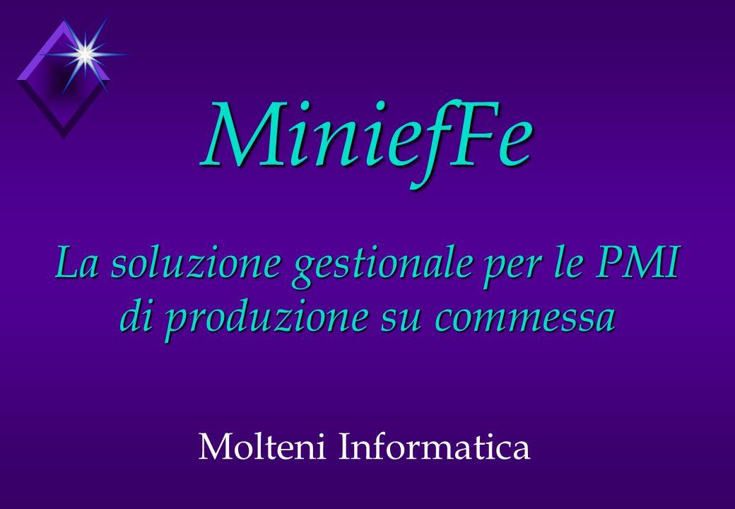 MiniefFe La soluzione gestionale per le PMI di produzione su commessa Molteni Informatica