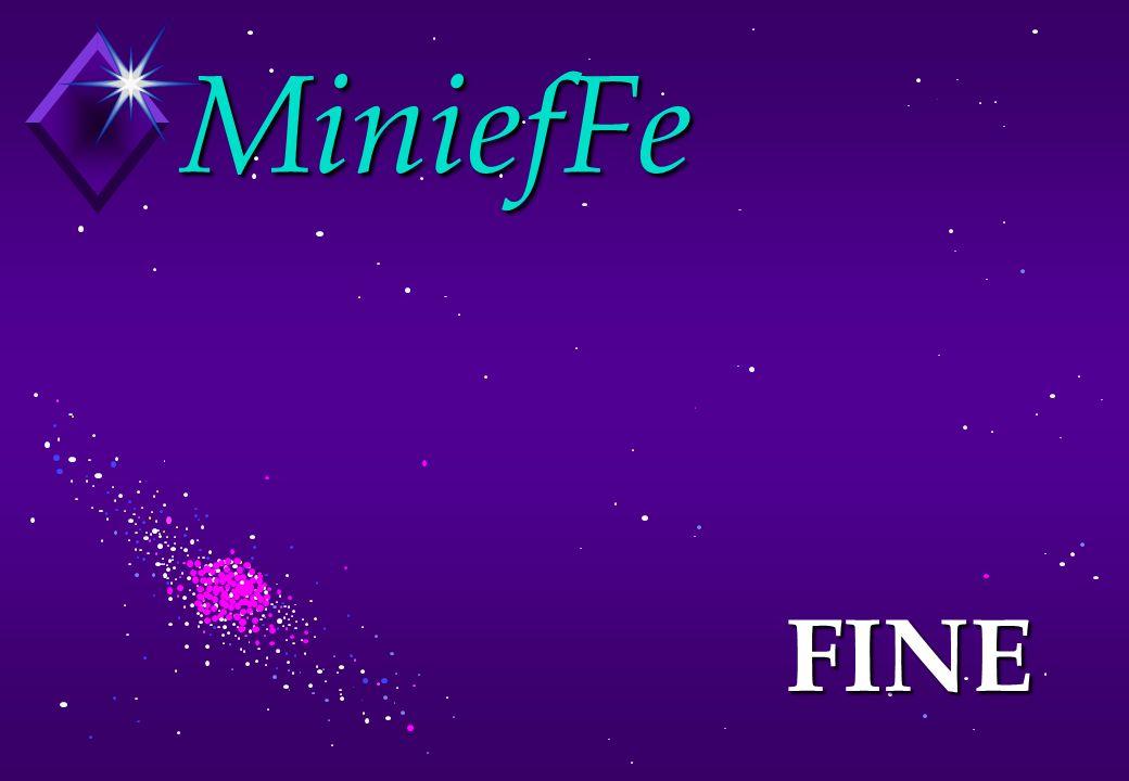 MiniefFe FINE