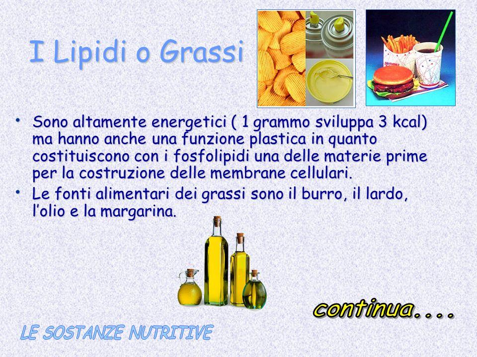 I Lipidi o Grassi Sono altamente energetici ( 1 grammo sviluppa 3 kcal) ma hanno anche una funzione plastica in quanto costituiscono con i fosfolipidi