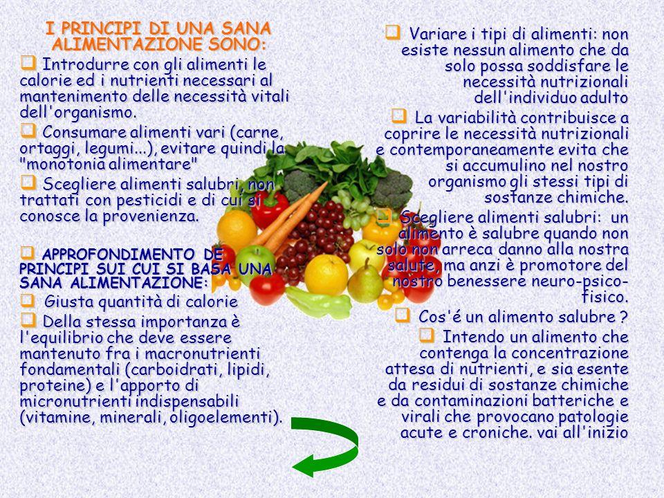 I PRINCIPI DI UNA SANA ALIMENTAZIONE SONO: Introdurre con gli alimenti le calorie ed i nutrienti necessari al mantenimento delle necessità vitali dell