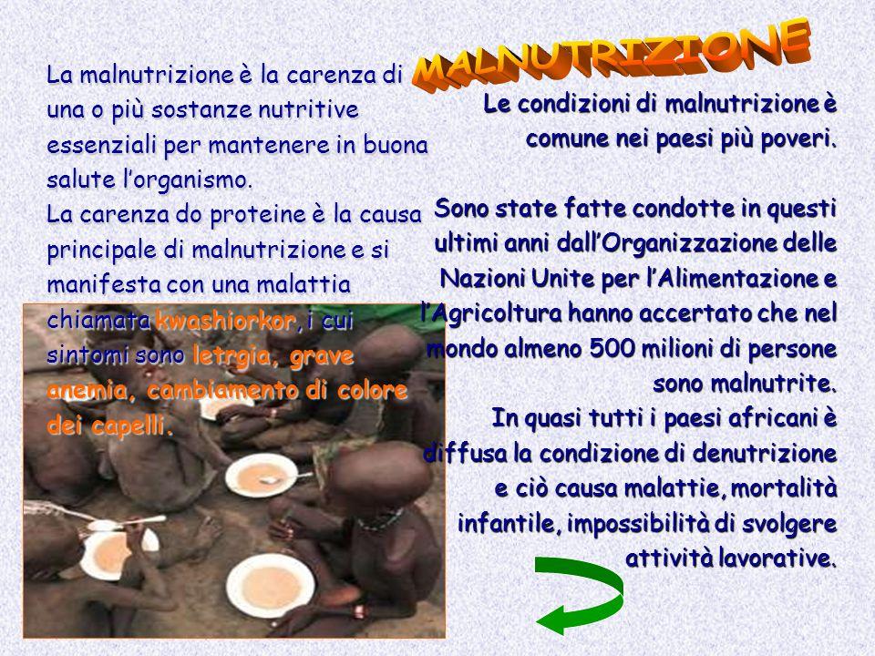 La malnutrizione è la carenza di una o più sostanze nutritive essenziali per mantenere in buona salute lorganismo. La carenza do proteine è la causa p