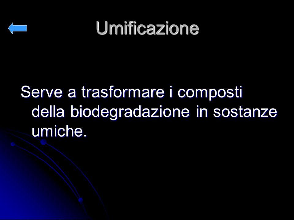 Umificazione Serve a trasformare i composti della biodegradazione in sostanze umiche.