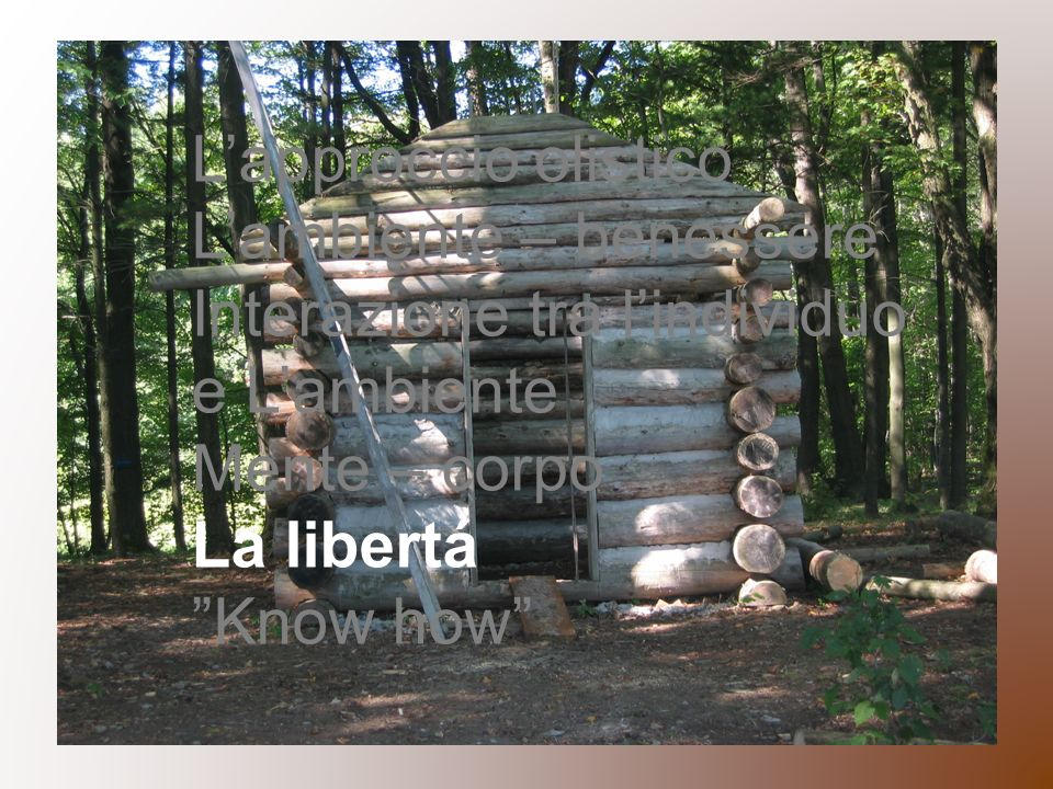 Lapproccio olistico Lambiente – benessere Interazione tra lindividuo e Lambiente Mente – corpo La libertá Know how