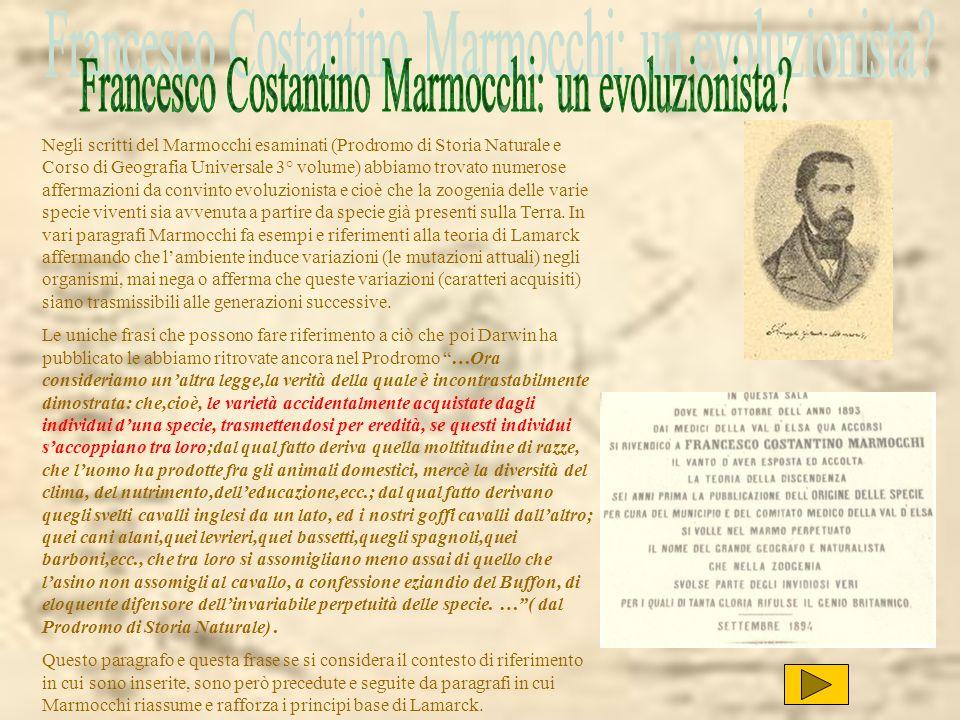 Negli scritti del Marmocchi esaminati (Prodromo di Storia Naturale e Corso di Geografia Universale 3° volume) abbiamo trovato numerose affermazioni da