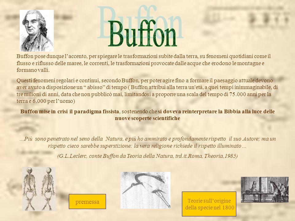 Buffon pose dunque laccento, per spiegare le trasformazioni subite dalla terra, su fenomeni quotidiani come il flusso e riflusso delle maree, le corre