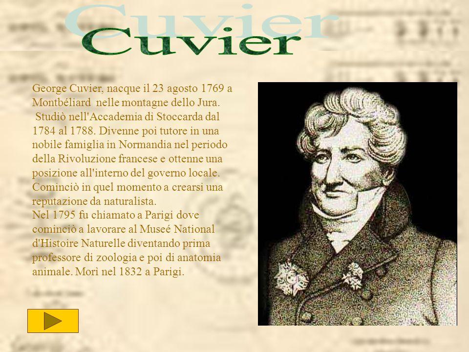 George Cuvier, nacque il 23 agosto 1769 a Montbéliard nelle montagne dello Jura. Studiò nell'Accademia di Stoccarda dal 1784 al 1788. Divenne poi tuto