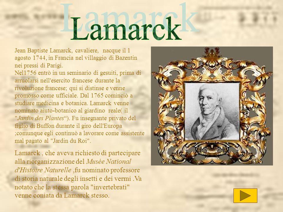 Jean Baptiste Lamarck, cavaliere, nacque il 1 agosto 1744, in Francia nel villaggio di Bazentin nei pressi di Parigi. Nel1756 entrò in un seminario di