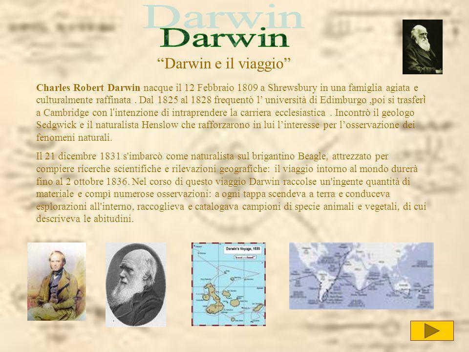 Charles Robert Darwin nacque il 12 Febbraio 1809 a Shrewsbury in una famiglia agiata e culturalmente raffinata. Dal 1825 al 1828 frequentò l universit