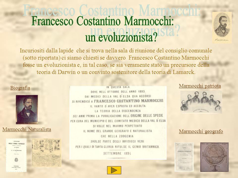 Marmocchi patriota Marmocchi Naturalista Marmocchi geografo Incuriositi dalla lapide che si trova nella sala di riunione del consiglio comunale (sotto