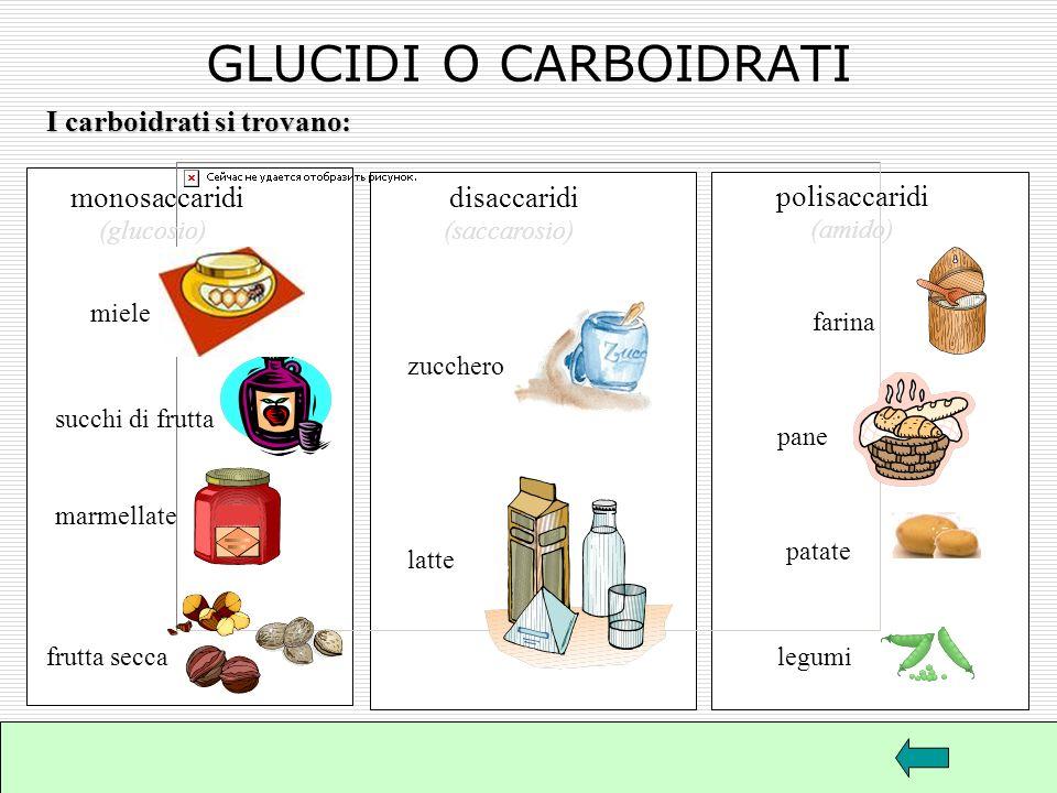 GLUCIDI O CARBOIDRATI Il termine glucide in greco significa dolce Gli zuccheri sono infatti dolci e solubili in acqua, ma lamido e la cellulosa che fa
