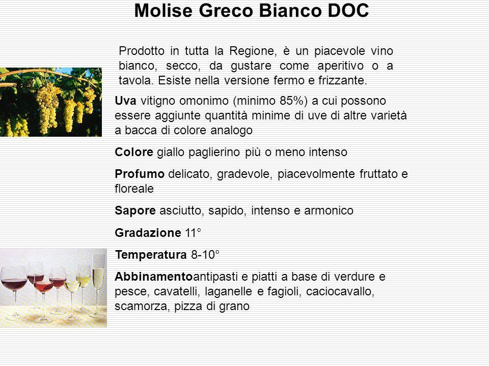 Biferno Rosso DOC E' una Doc prodotta nella zona di Campobasso: invecchiato da 1 a 4 anni, è un tranquillo vino da pasto. Uva Montepulciano (60-70%),