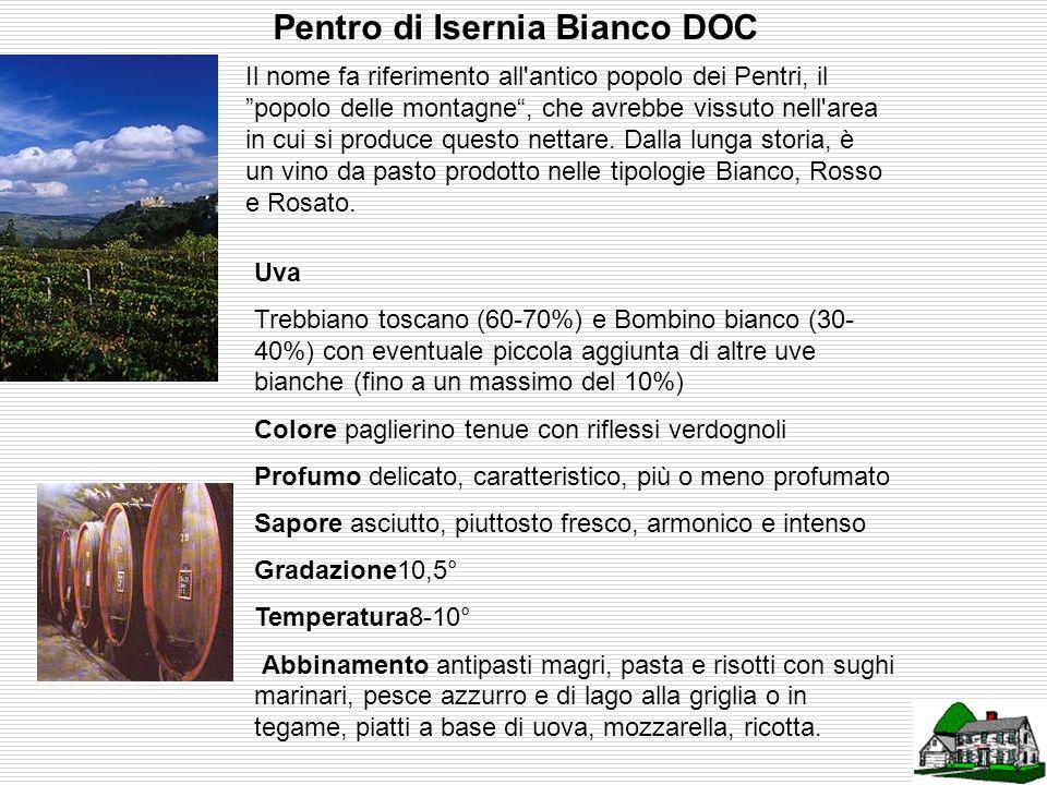 Molise Greco Bianco DOC Prodotto in tutta la Regione, è un piacevole vino bianco, secco, da gustare come aperitivo o a tavola. Esiste nella versione f
