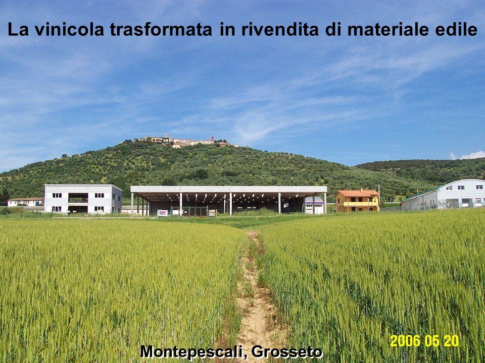 Montepescali Montepescali, Grosseto La vinicola trasformata in rivendita di materiale edile