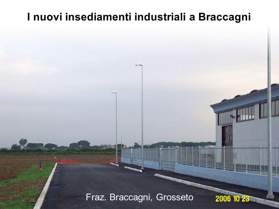 Fraz. Braccagni, Grosseto I nuovi insediamenti industriali a Braccagni
