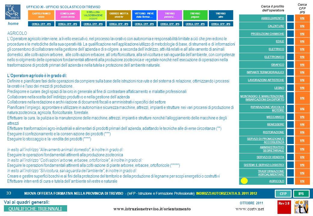 33 Vai ai quadri generali: QUALIFICHE TRIENNALI NUOVA OFFERTA FORMATIVA NELLA PROVINCIA DI TREVISO - (IeFP - Istruzione e Formazione Professionale) INDIRIZZI AUTORIZZATI A.S.