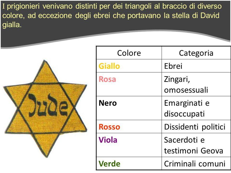 I prigionieri venivano distinti per dei triangoli al braccio di diverso colore, ad eccezione degli ebrei che portavano la stella di David gialla. Colo