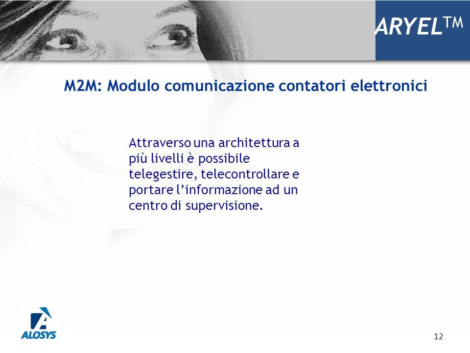 12 ARYEL TM Attraverso una architettura a più livelli è possibile telegestire, telecontrollare e portare linformazione ad un centro di supervisione. M
