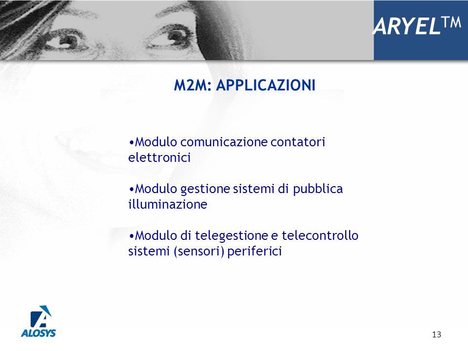 13 ARYEL TM Modulo comunicazione contatori elettronici Modulo gestione sistemi di pubblica illuminazione Modulo di telegestione e telecontrollo sistem