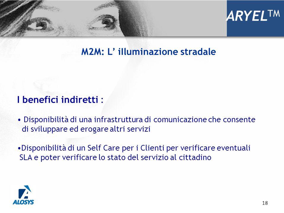 18 ARYEL TM I benefici indiretti : Disponibilità di una infrastruttura di comunicazione che consente di sviluppare ed erogare altri servizi Disponibil