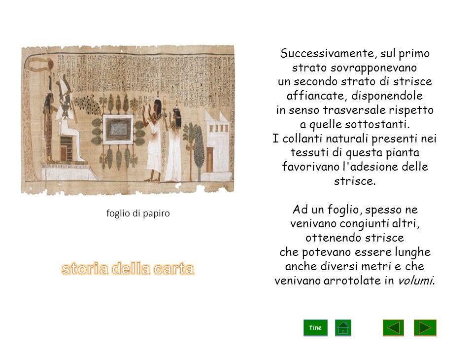 Più tardi, nella città greca di Pergamo, come supporto per la scrittura si cominciò ad utilizzare la pelle di pecora.