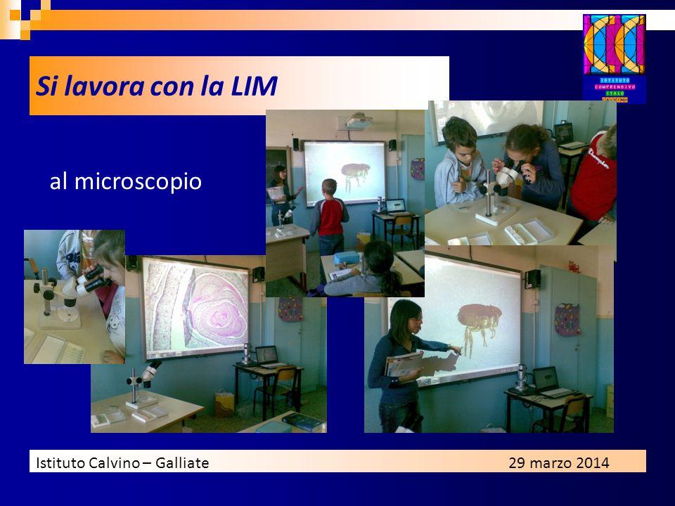 Istituto Calvino – Galliate29 marzo 2014 al microscopio Si lavora con la LIM