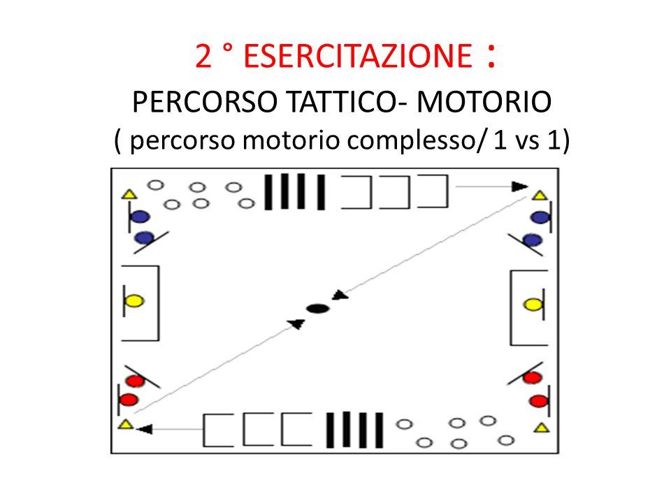 2 ° ESERCITAZIONE : PERCORSO TATTICO- MOTORIO ( percorso motorio complesso/ 1 vs 1)