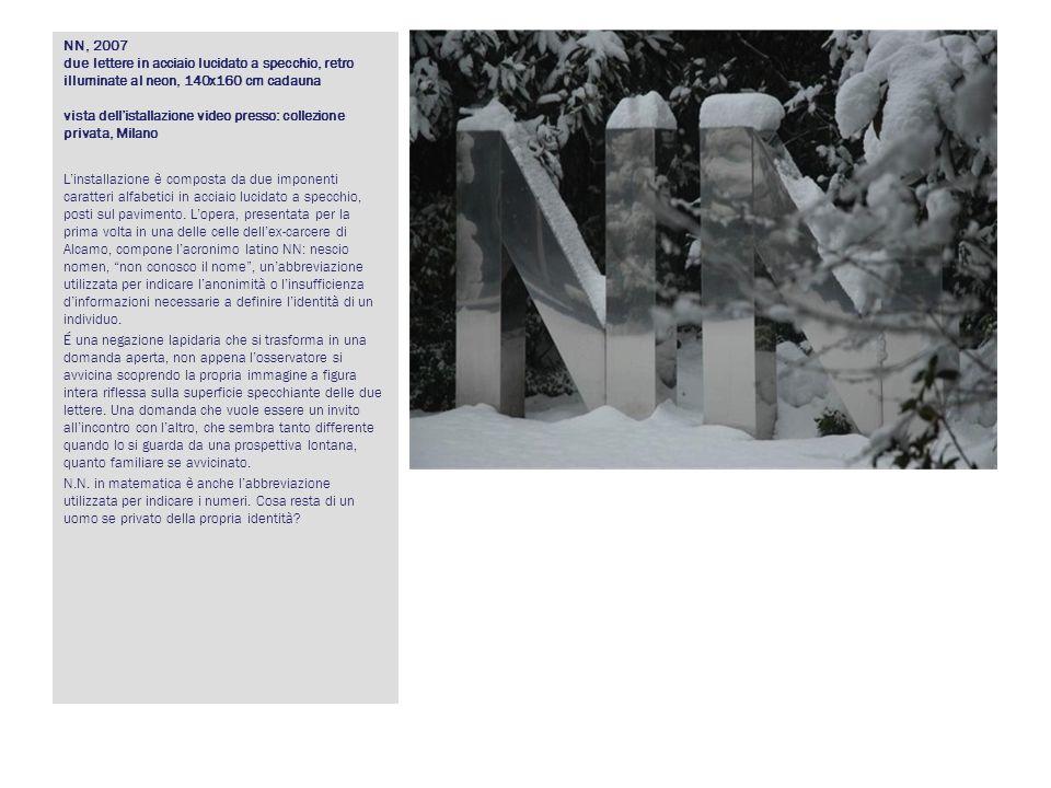 NN, 2007 due lettere in acciaio lucidato a specchio, retro illuminate al neon, 140x160 cm cadauna vista dellistallazione video presso: collezione priv
