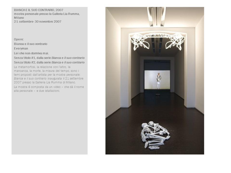 BIANCA E IL SUO CONTRARIO, 2007 mostra personale presso la Galleria Lia Rumma, Milano 21 settembre- 30 novembre 2007 Opere: Bianca e il suo contrario