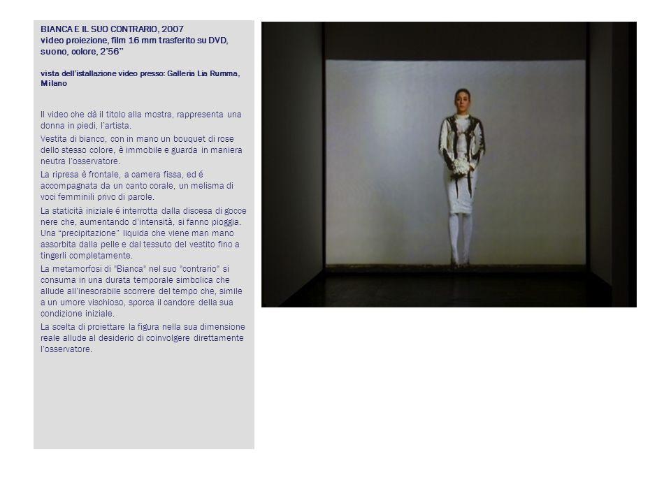 BIANCA E IL SUO CONTRARIO, 2007 video proiezione, film 16 mm trasferito su DVD, suono, colore, 256 vista dellistallazione video presso: Galleria Lia R
