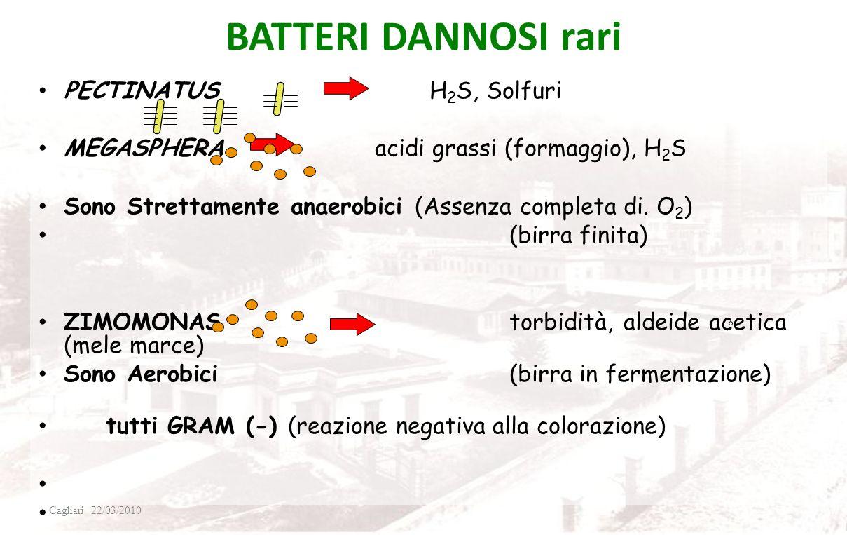 BATTERI DANNOSI comuni LATTOBACILLI Acido Lattico, Diacetile PEDIOCOCCHI Acido Lattico, Diacetile CATALASE (-) (reazione negativa con H 2 O 2 ) GRAM (