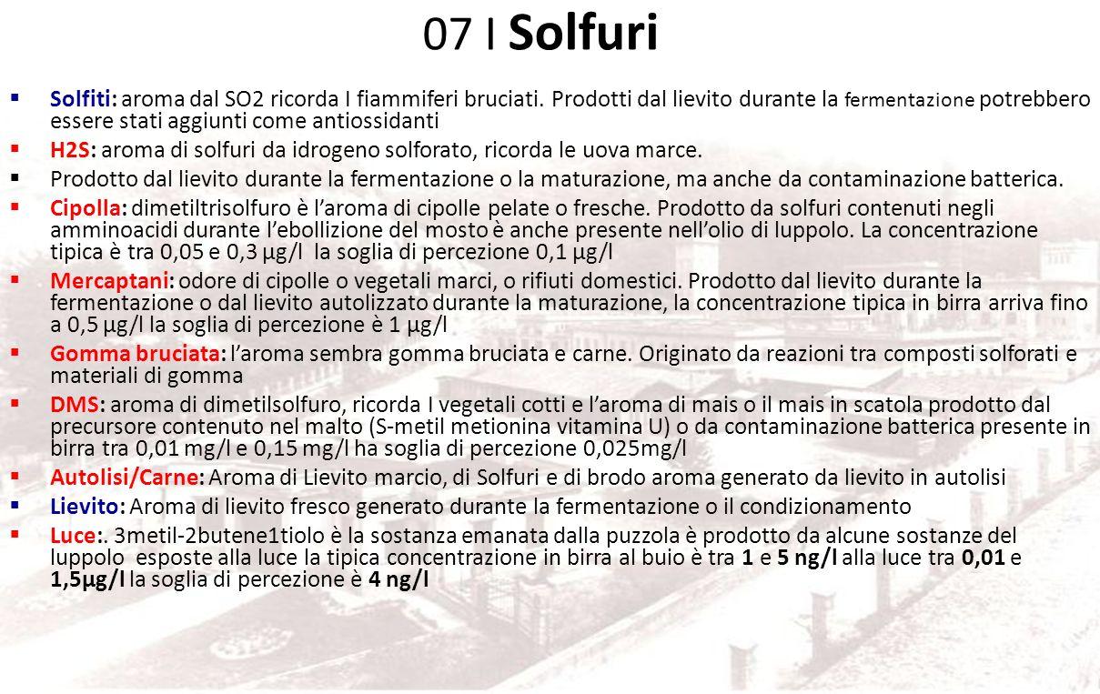 Gruppo 07 Solfuri 3 sotto gruppi: Solfiti SO2 Solfuri, Luce Lievito, Carne
