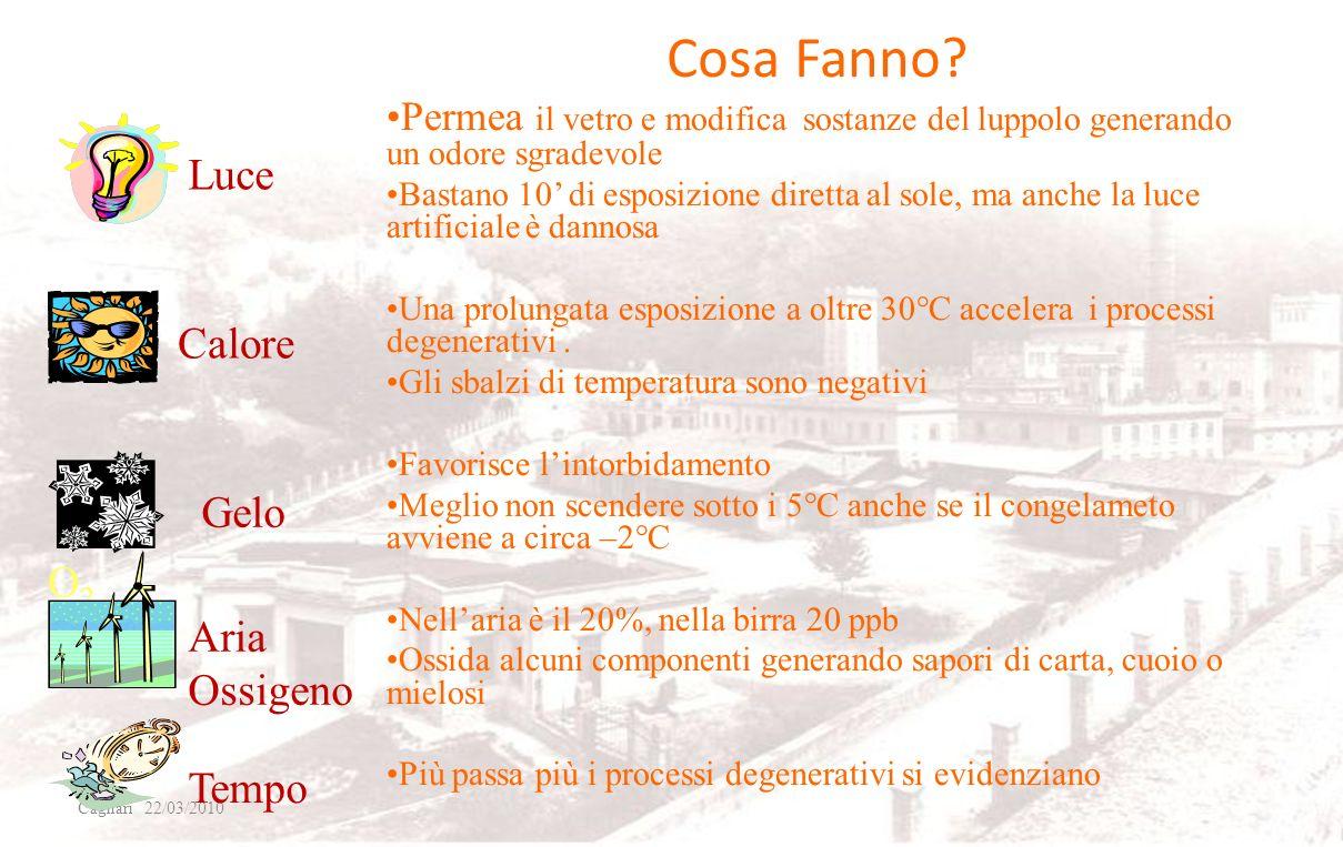 I Nemici della Birra Cagliari 22/03/2010 Luce Gelo Tempo O2O2 Calore Aria Ossigeno