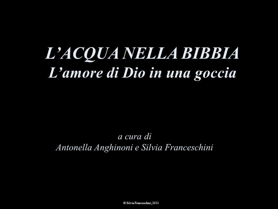 a cura di Antonella Anghinoni e Silvia Franceschini © Silvia Franceschini, 2011 LACQUA NELLA BIBBIA Lamore di Dio in una goccia