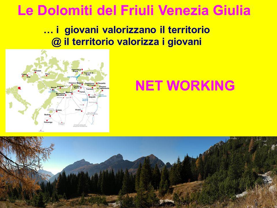 Le Dolomiti del Friuli Venezia Giulia … i giovani valorizzano il territorio @ il territorio valorizza i giovani NET WORKING